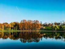 Piękni wiosen drzew odbicia W Wodnym jeziorze Tineretului park W Bucharest Obraz Stock