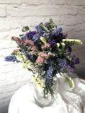 Piękni wysuszeni kwiaty Obrazy Royalty Free