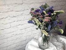 Piękni wysuszeni kwiaty Zdjęcie Royalty Free