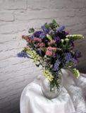 Piękni wysuszeni kwiaty Zdjęcia Stock