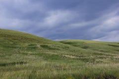 piękni wzgórza Zdjęcie Stock