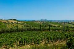 Piękni wzgórza w prowinci Teramo fotografia stock