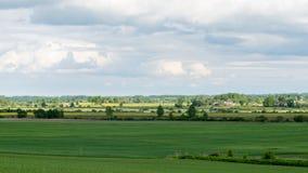 Piękni zieleni pola pod niebieskim niebem w lecie Fotografia Stock