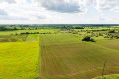 Piękni zieleni pola pod niebieskim niebem w lecie Obrazy Stock