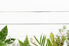 Pi?kno i aromatherapy poj?cie z zdrojem ustawiaj?cym na pastelowym nieociosanym drewnianym tle obraz stock