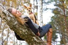 piękno jesienny park Obrazy Stock