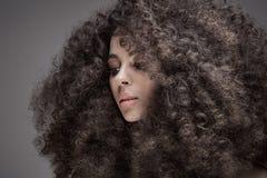Piękno portret dziewczyna z afro Fotografia Royalty Free