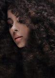 Piękno portret dziewczyna z afro Obrazy Stock