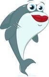 Piękno rekin Zdjęcie Royalty Free