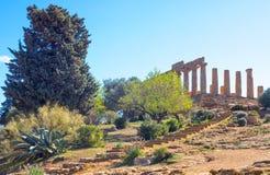 Piękno sztuka i natura Agrigento prowincja Fotografia Royalty Free