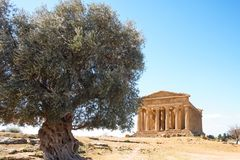 Piękno sztuka i natura Agrigento prowincja Obraz Stock