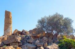 Piękno sztuka i natura Agrigento prowincja Obrazy Royalty Free