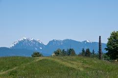 piękno target1283_1_ Vancouver s Obrazy Royalty Free