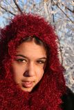 piękno zima Obrazy Royalty Free