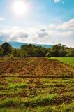 piękny agricolture krajobraz Obraz Royalty Free