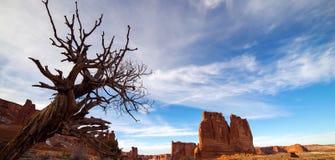 Pi?kny akcyjny wizerunek bra? przy ?uku parkiem narodowym w Utah obrazy stock