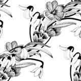 Piękny akwareli lata ogródu kwitnienie Kwitnie Bezszwowego wzór Zdjęcia Royalty Free