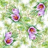 Piękny akwareli lata ogródu kwitnienie Kwitnie Bezszwowego wzór Obraz Royalty Free