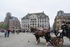 Piękny Amsterdam w Czerwu Obraz Stock