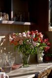 Piękny asteru kwiatu bukiet fotografia stock