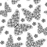 Piękny bezszwowy wzór z motylami Obraz Royalty Free