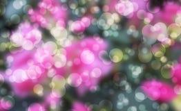 Piękny bokeh Fotografia Stock