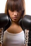 piękny bokser Obraz Royalty Free