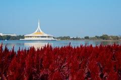 Piękny budynek blisko jeziora Zdjęcie Royalty Free
