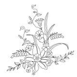 piękny bukiet kwitnie dzikiego Ilustracji
