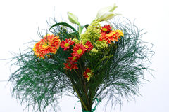 piękny bukiet lily zieleni Obraz Stock