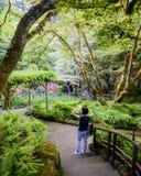 Piękny butchart ogródu park BC CA Fotografia Royalty Free