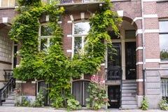 Piękny dom z drzwiami i Windows Obrazy Stock