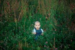 piękny dzieciaka obsiadanie w zielonej trawie w lecie Zdjęcie Royalty Free
