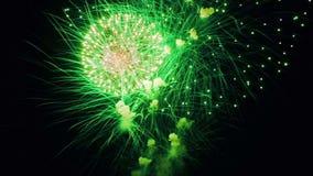 Piękny fajerwerku przedstawienie w nocnym niebie zdjęcie wideo