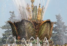 Piękny fontanna kamienia kwiat Zdjęcie Royalty Free