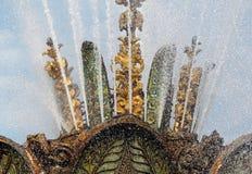Piękny fontanna kamienia kwiat Obraz Stock
