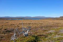 Piękny góra krajobraz Obrazy Stock