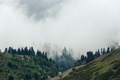 Piękny halny lasu krajobraz Obrazy Stock
