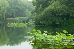 piękny Hangzhou Obrazy Royalty Free