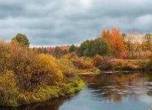 Piękny jesieni rzeki krajobraz z kolorowymi drzewami Zdjęcie Stock