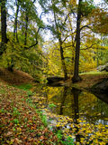 piękny jesienny park Obraz Stock