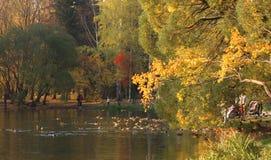 pi?kny jesienny park fotografia stock