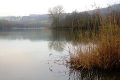Piękny jezioro w Echternach, Luksemburg Zdjęcie Stock