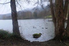Piękny jezioro w Echternach, Luksemburg Zdjęcia Royalty Free