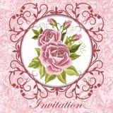 piękny karciany rocznik Obrazy Royalty Free