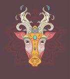 Piękny karciany wektor Zdjęcie Royalty Free