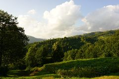 Piękny Karpacki widok górski w lato czasie fotografia stock