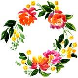 Piękny kartka z pozdrowieniami z kwiecistym wiankiem Zdjęcie Royalty Free