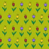 Piękny kolorowy kwiatu set, Wektorowy bezszwowy wzór Zdjęcia Stock