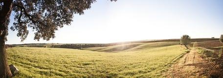 Piękny krajobraz Zdjęcie Royalty Free